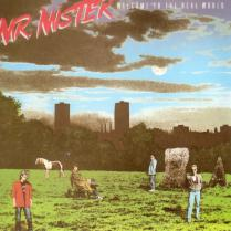 Mr.Mister/Welcome To The Real World